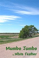 Cover for 'Mumbo Jumbo'