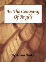Cover for 'In The Company of Angels'