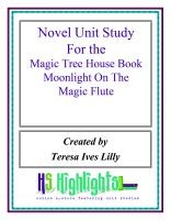 Cover for 'Novel Unit Study for the Magic Tree House Book Moonlight on the Magic Flute'