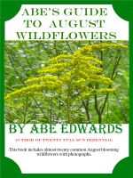 Cover for 'Abe's Guide to August Wildflowers'