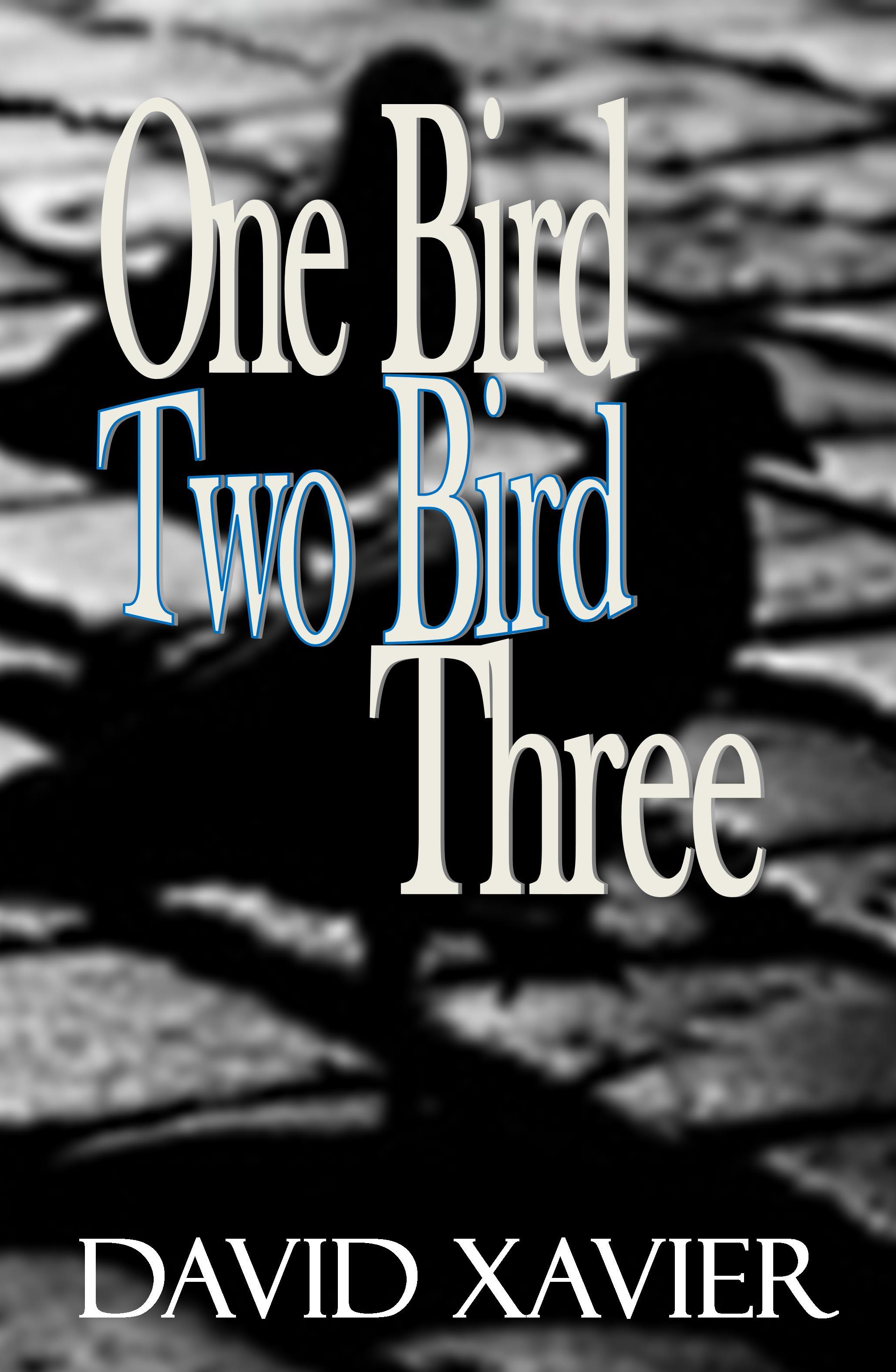 David Xavier - One Bird, Two Bird, Three