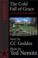 Cover for 'The Cold Fall of Grace'