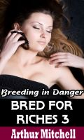 Cover for 'Bred for Riches 3: Breeding in Danger (BDSM Erotic Romance)'