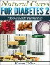 Natural Cures For Type 2 Diabetes Homemade Remedies by Karen Tellon