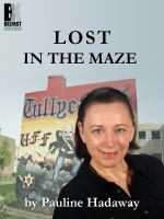 Cover for 'Lost In the Maze'