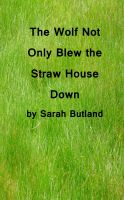 Cover for 'The Wolf Not Only Blew the Straw House Down'