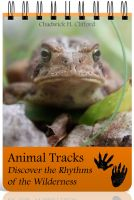 Cover for 'Animal Tracks: Discover the Rhythms of the Wilderness'