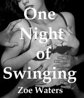 Cover for 'One Night of Swinging'