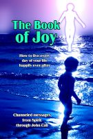 Cover for 'The Book of Joy: How to Live Every Day of Your Life Happily Ever After'