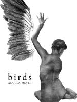 Cover for 'Birds (short story)'