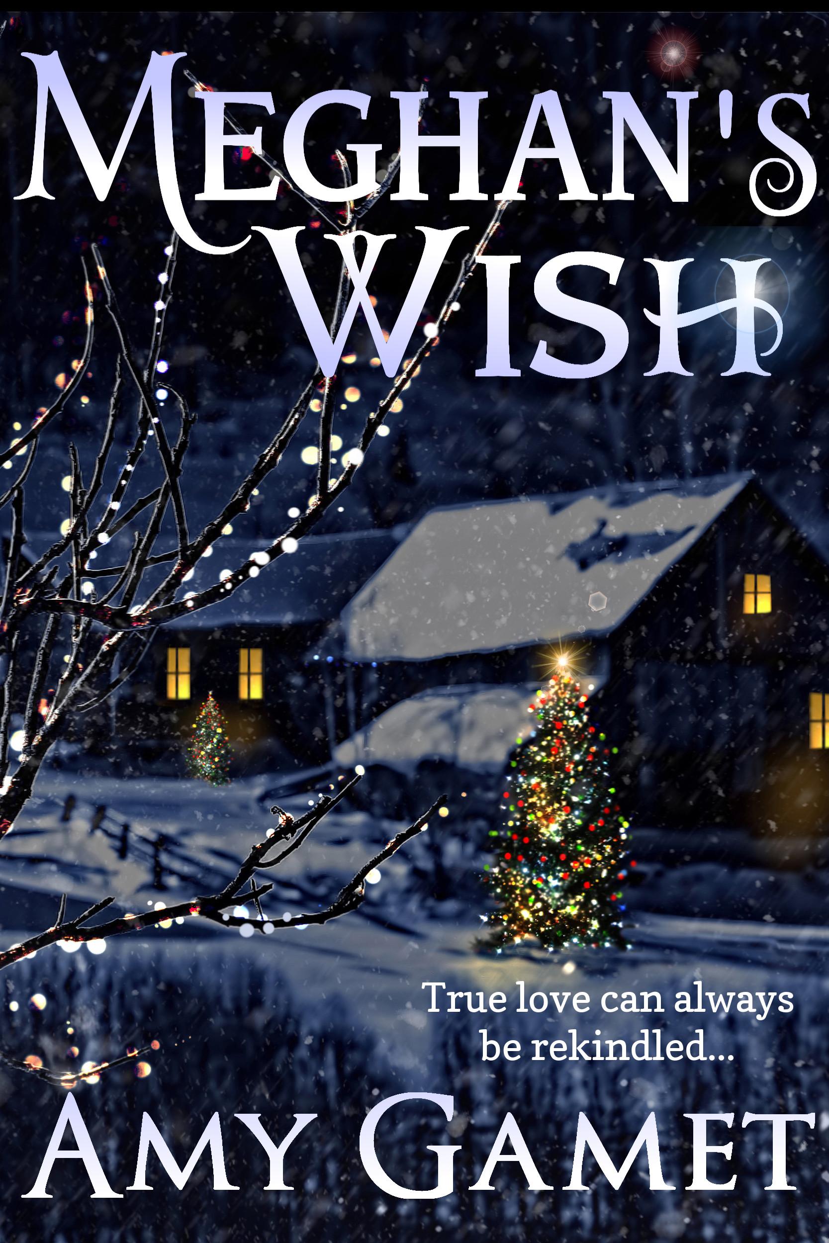 Amy Gamet - Meghan's Wish