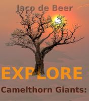 Cover for 'Camelthorn Giants: Explore'