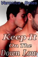 Cover for 'Keep It On The Down Low (Cheating On Wife) (Gay Sex)'