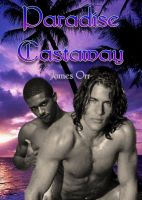 Cover for 'Paradise Castaway'