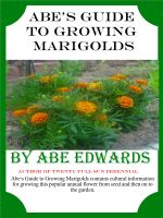 Cover for 'Abe's Guide to Growing Marigolds'