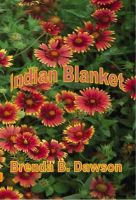 Cover for 'Indian Blanket'