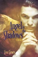 Cover for 'Angel in the Shadows, Book 1 by Lisa Grace (Angel Series)'