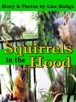 Cover for 'Squirrels in the Hood'