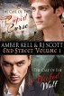 End Street Detective Agency Volume 1 by Amber Kell