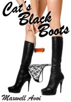 Cover for 'Cat's Black Boots'