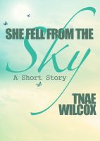 Cover for 'She Fell from the Sky'