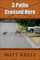 Cover for '3 Paths Crossed Here'