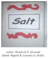 Cover for 'Salt'
