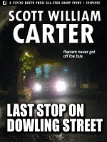 Cover for 'Last Stop on Dowling Street'
