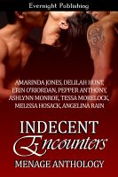 Cover for 'Indecent Encounters'