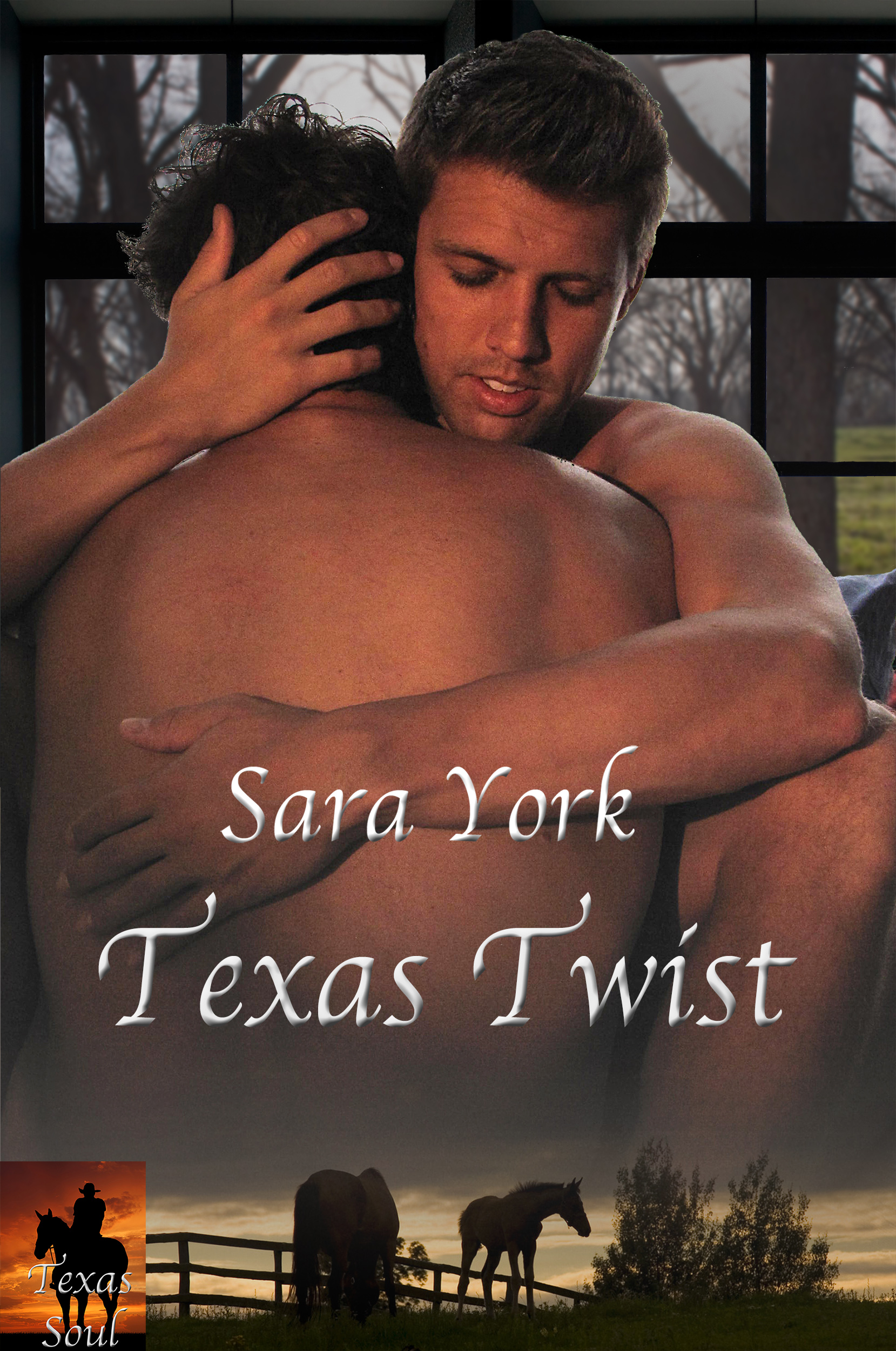 Sara York - Texas Twist