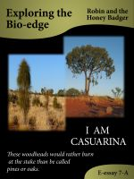Cover for 'I Am Casuarina'