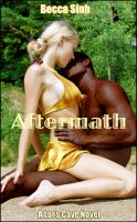 "Cover for 'Aftermath (Book 2 of ""The Promise Papers - Sinful Secrets"")'"
