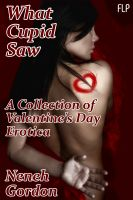 Cover for 'What Cupid Saw - A Collection of Valentine's Day Erotica (Short Story Anthology)'