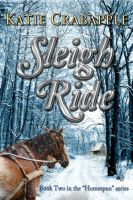 Cover for 'Sleigh Ride'