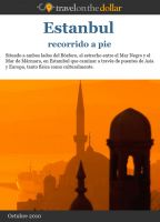 Cover for 'Estanbul recorrido a pie'