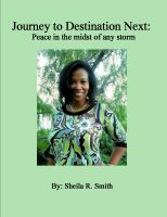 Cover for 'Journey to Destination Next: Peace in the midst of any storm'