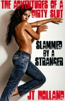 Cover for 'Slammed By A Stranger'
