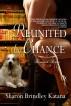Reunited by Chance by Sharon Brindley Katana