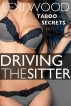 Driving the Sitter by Lexi Wood