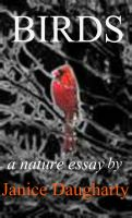 Cover for 'Birds in Migration: a descriptive nature essay'