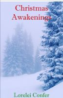 Cover for 'Christmas Awakenings'