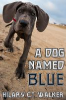 Cover for 'A Dog Named Blue'
