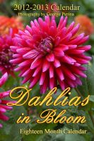 Cover for 'Dahlias In Bloom'