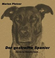 Cover for 'Der gestreifte Spanier'