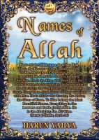 Cover for 'Names of Allah'