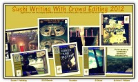 Cover for 'SUSHI WRITING WITH CROWD EDITING 2012'