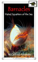 Cover for 'Barnacles: Hated Squatters of the Sea: Educational'