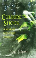 Cover for 'Culture Shock'
