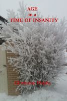 Cover for 'Age In A Time Of Insanity and Other Short Stories'