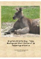 Cover for 'Brigitte's Wildlife Blog – Tales and Stories of 'de happenings around us'